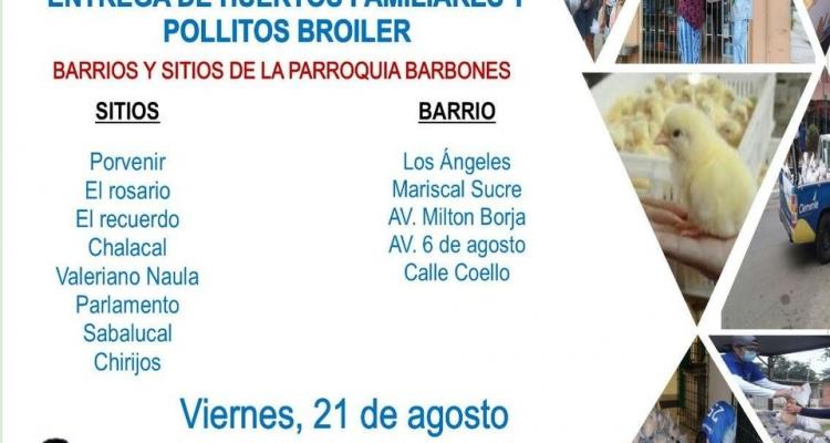 ENTREGA DE AVICOLAS Y SEMILLAS PARA HUERTOS FAMILIARES EN NUESTRA PARROQUIA.